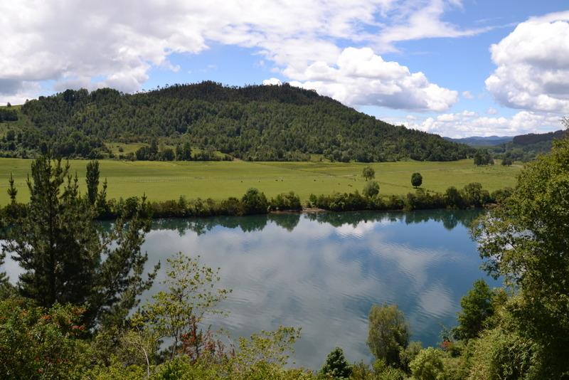 paisaje pradera lago bosque