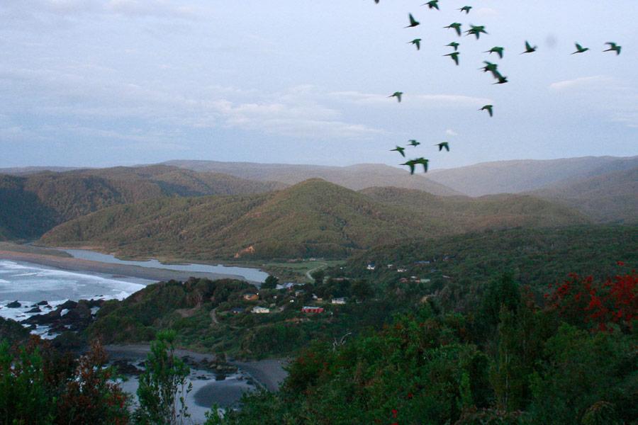 Landtrust Reserva Costera Valdiviana Chile FORECOS