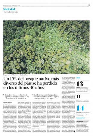 Noticia La Tercera, perdida de bosque nativo